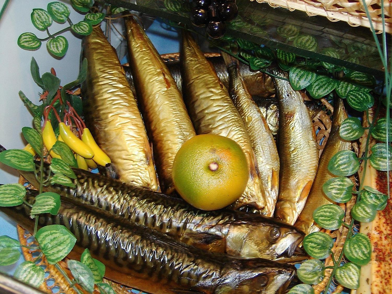 Как правильно коптить рыбу холодного копчения — Здесь рыба
